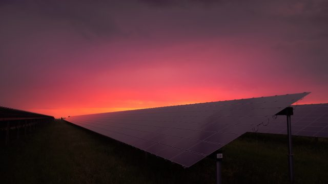 solar farm in sunset